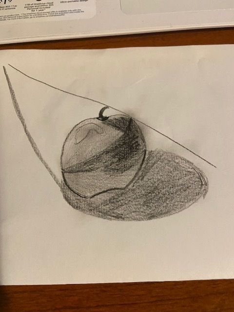 Nicholas apple drawing